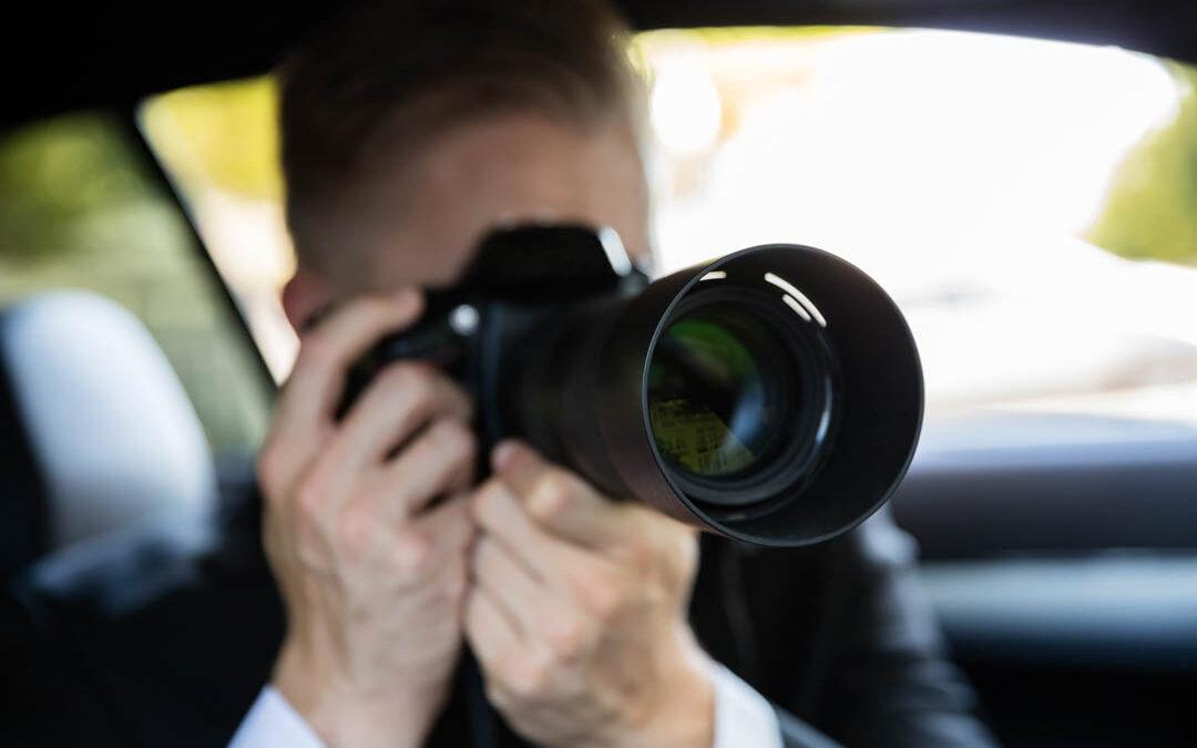 caméra observation faune