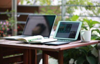 Développeur Web freelance: quel statut choisir?